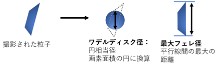 動的画像図2